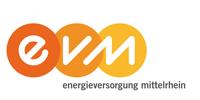 Logo EVM